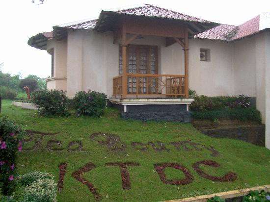 KTDC Tea County Munnar : A cottage