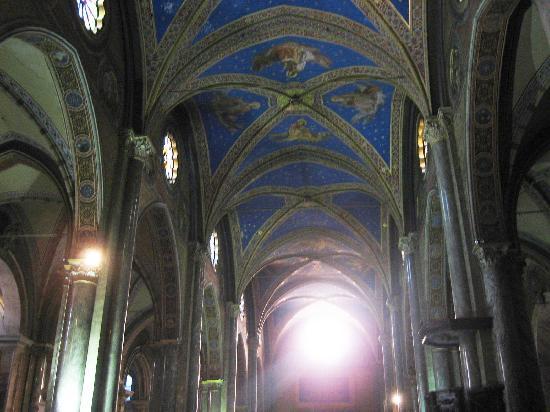 Santa Maria Sopra Minerva: nave