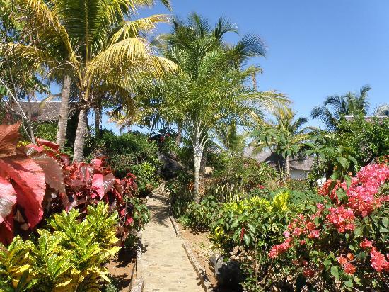 Mahafaly Lodge: Garten / jardin