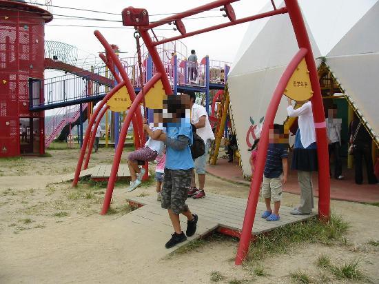 Fukuyama City Zoo : 遊具だらけの公園