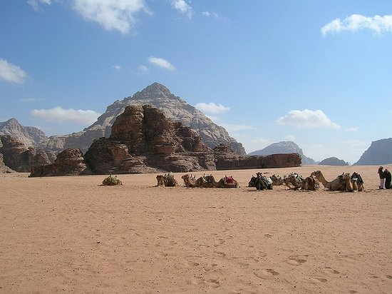 ‪Wadi Rum Protected Area‬