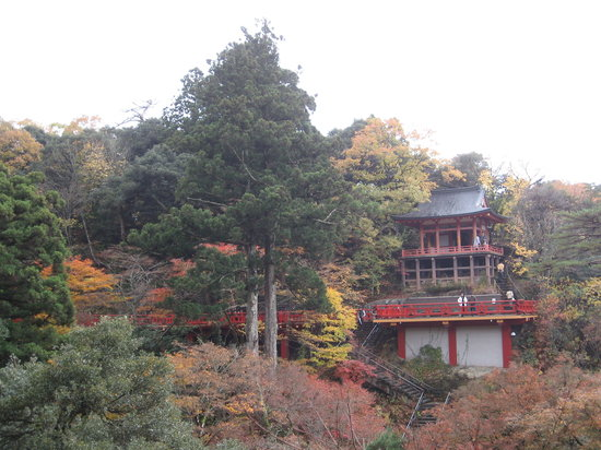 Natadera Temple: The view from the hill at Natadera