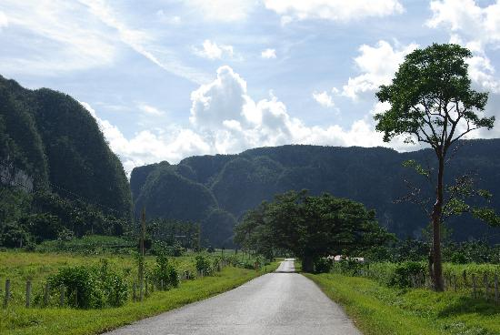 Villa Cristal: Cycling through Vinales gardin
