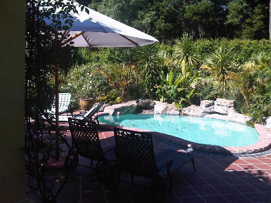 La Providence Farm : Swimming pool