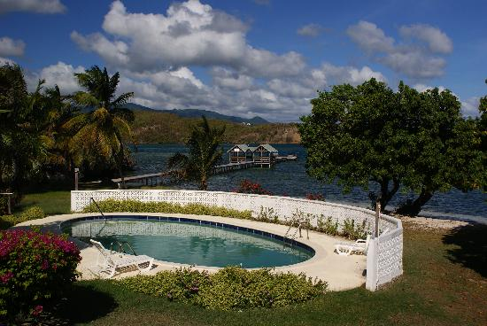 Coral Cove Cottages & Apartments : Had it to ourselves most days...