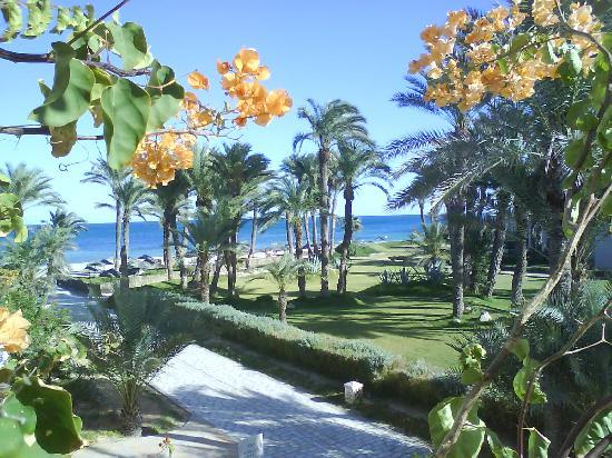 Zita Beach Resort: Vue de la chambre