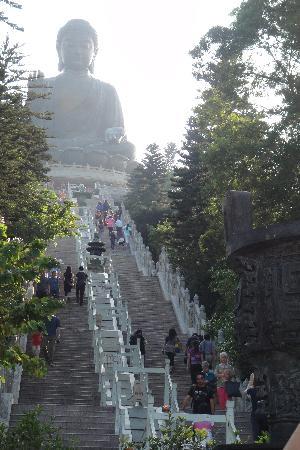 Hong Kong, Chine : Po Lin Monastery_world's biggest statue of Buddha