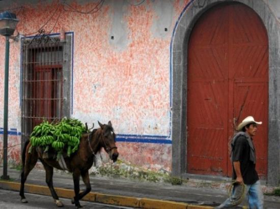 Coatepec, México: Por las calles de Xico