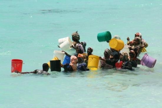 Nungwi, Tanzania: retour de pêche