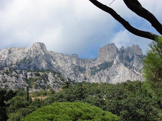 Yalta Municipality