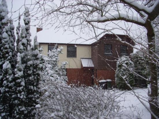 Bilde fra Basingstoke