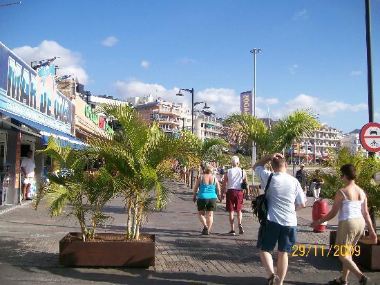 Comodoro Apartments : Los Cris Boardwalk