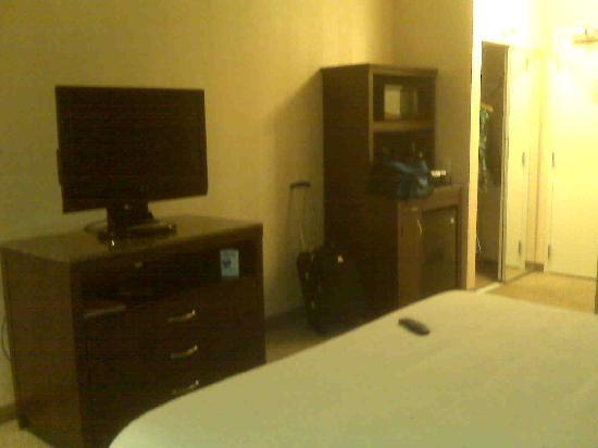 Hilton Garden Inn Detroit/Novi: King room tv, dresser, microwave