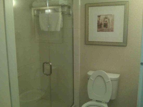 Bathroom Toilet And Shower Picture Of Hilton Garden Inn Detroit Novi Novi Tripadvisor