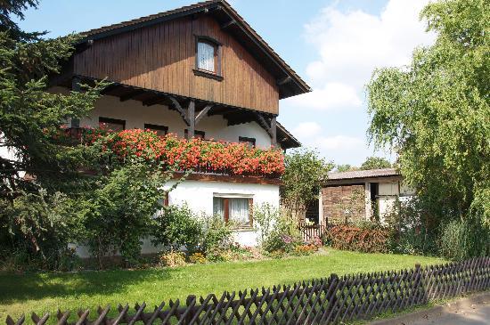 Apartments & Hotel Kurpfalzhof: The neighborhood