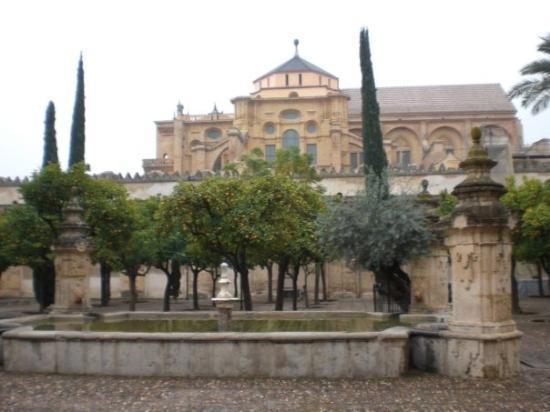 Moschee-Kathedrale (Mezquita de Córdoba): Masjid Kathedral di Cordoba Spain