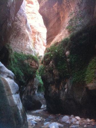 Feynan Ecolodge: Hiking