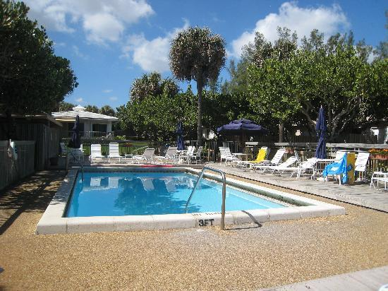 Delray South Shore Club: View from pool