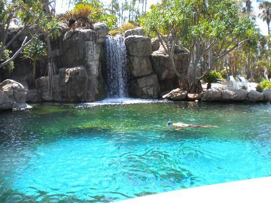 Surfers Paradise Marriott Resort & Spa: Lagoon and Waterfall.