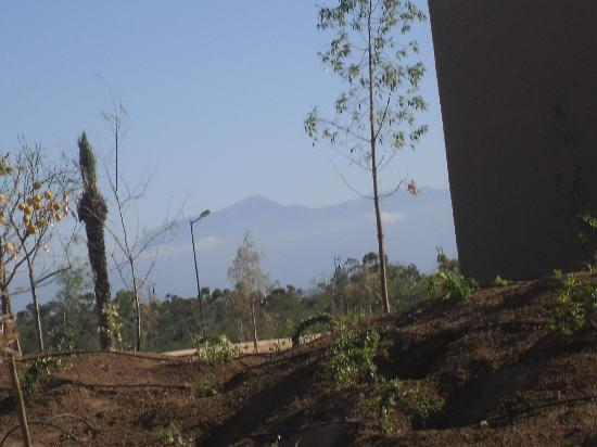 Hotel Riu Tikida Palmeraie : mountains from pool area