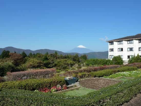 Hotel Green Plaza Hakone: The view!!