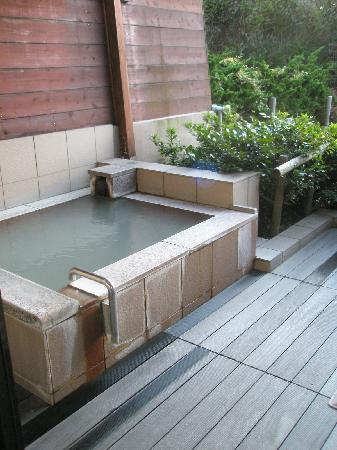 Hotel Green Plaza Hakone: Private onsen