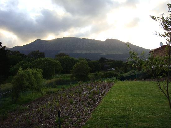 Dongola Guest House : Mountain view from the room