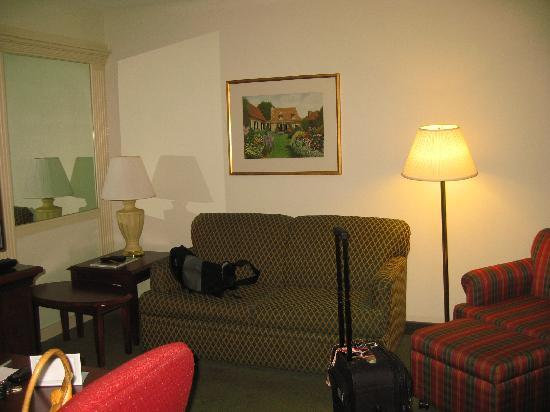 SpringHill Suites Raleigh-Durham Airport/Research Triangle Park: couch