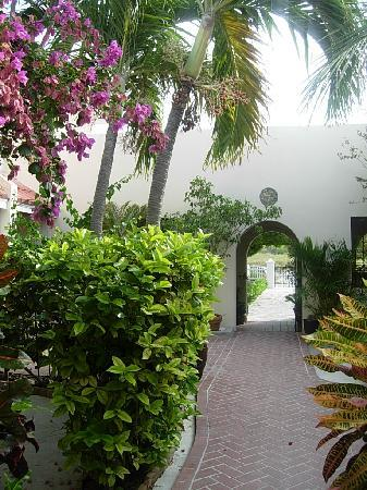 Island House Hotel: apartment gardens