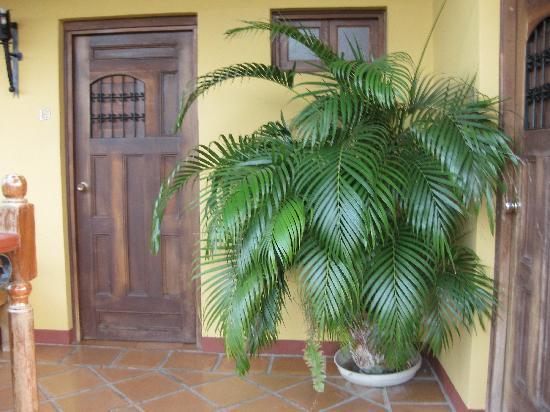 Hotel La Pergola: room n°10