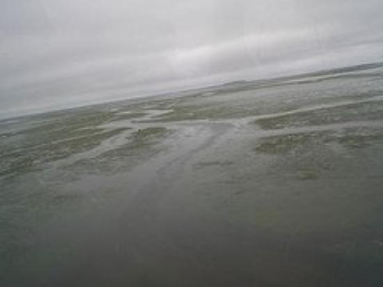 Bilde fra Cold Bay