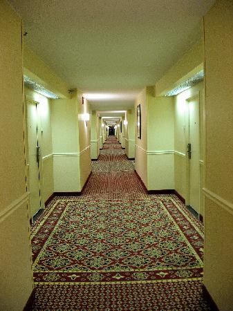 Hilton Fort Wayne at the Grand Wayne Convention Center: Hallway