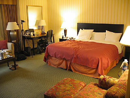 Hilton Fort Wayne at the Grand Wayne Convention Center: Great bed, office chair, chair with ottoman