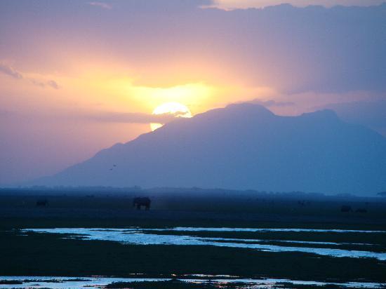 Amboseli Eco-system, Kenya: Sunset-2