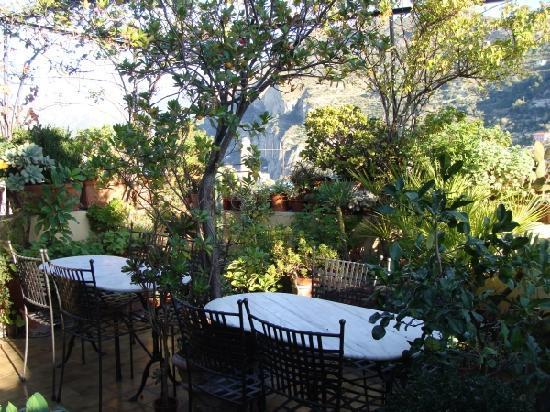 Garden terrace with view - Picture of La Terrazza Dei Pelargoni B&B ...