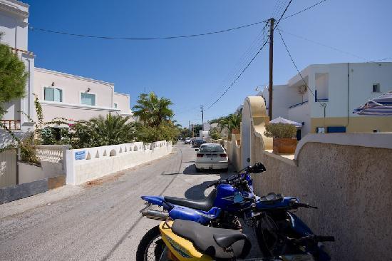 Hotel Anemones: Anemones from street