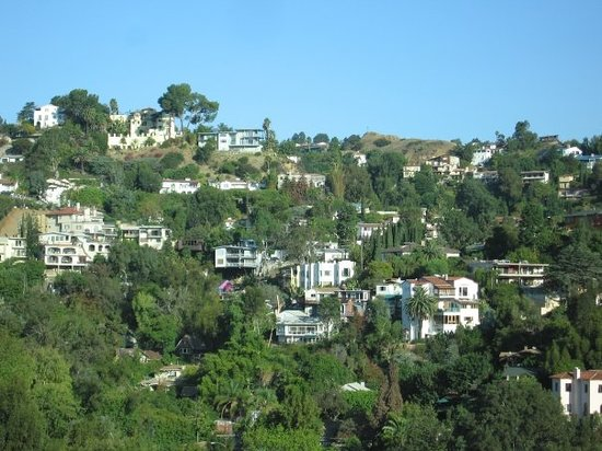 ‪Hollywood Hills‬