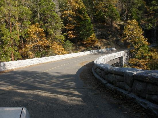 Lodgepole Campground: Road To Crystal Cave