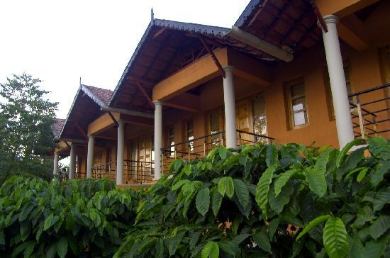 Pranavam Homestay: front view from the plantation
