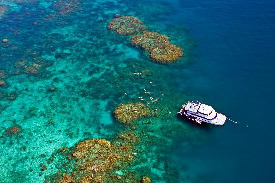 Reef Experience - Great Barrier Reef Australia