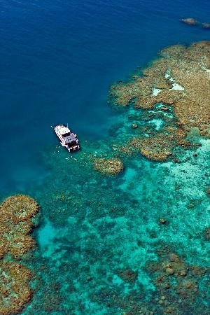 Great Barrier Reef - Reef Experience