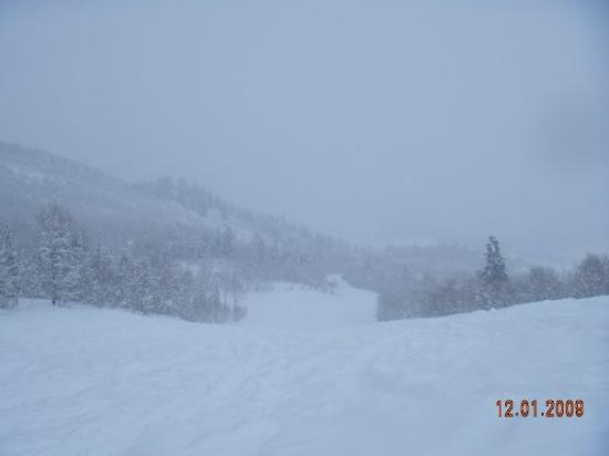Buttermilk Mountain: It's snowing again.  We're at Buttermilk today and the snow is very deep, making it hard to turn