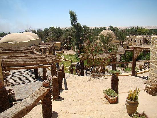 Qasr El Bawity Hotel : Compound