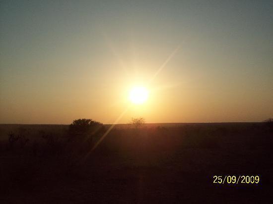 Kivulini Luxury Resort: tramonto nella SAVANA