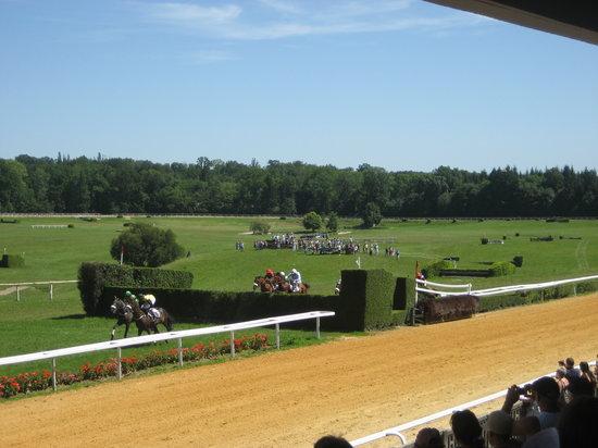 Pompadour Racecourse (Hippodrome de Pompadour)