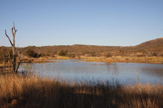 Mabalingwe Nature Reserve: One of several attractive lakes