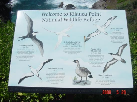 Kilauea Point National Wildlife Refuge: 海鳥の看板