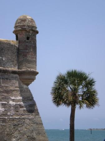 Spanish Fort St Augustine Fl Picture Of St