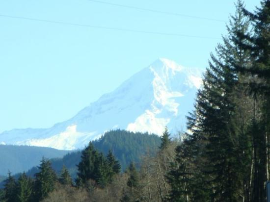 แซนดี, ออริกอน: Mount Hood - view from Hwy 26 between Sandy and Mount Hood Village.