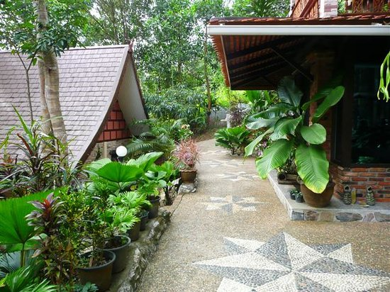 Khao Sok Las Orquideas Resort: las orquideas